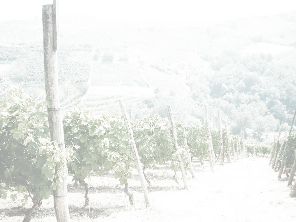 La-Riva-Vite